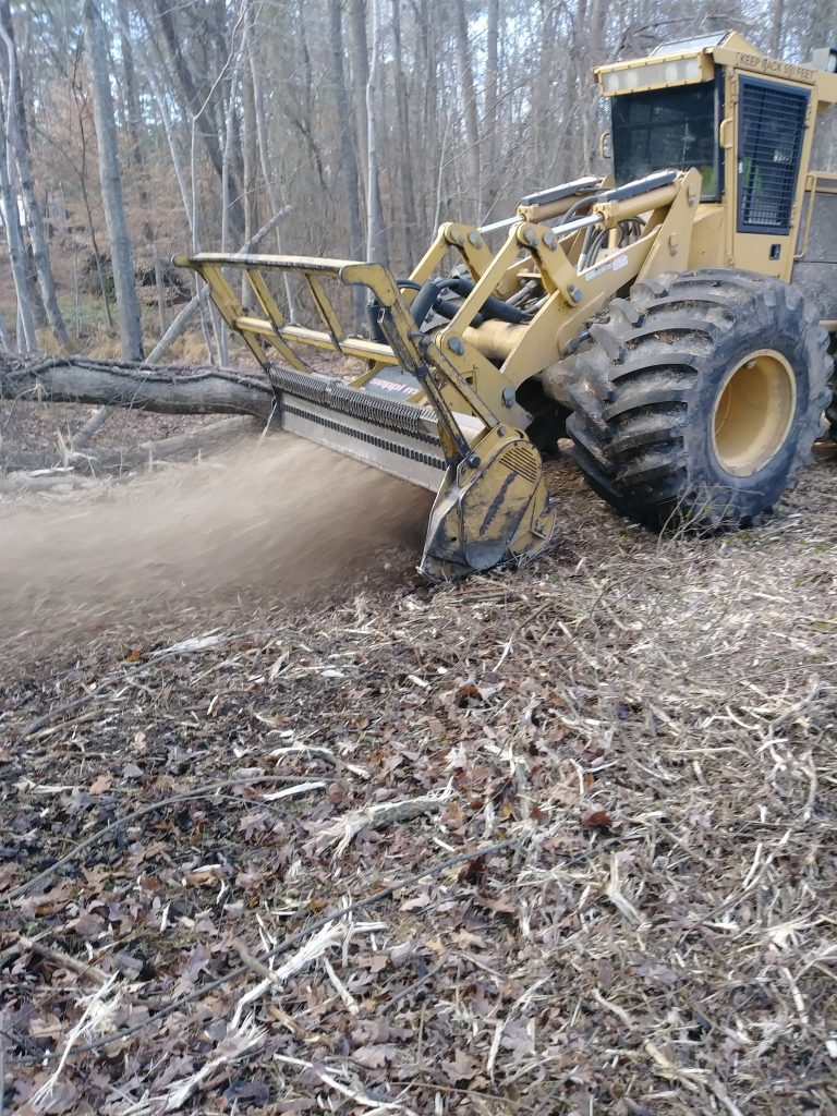Forestry Mulching Services Hydrocut Land Clearing