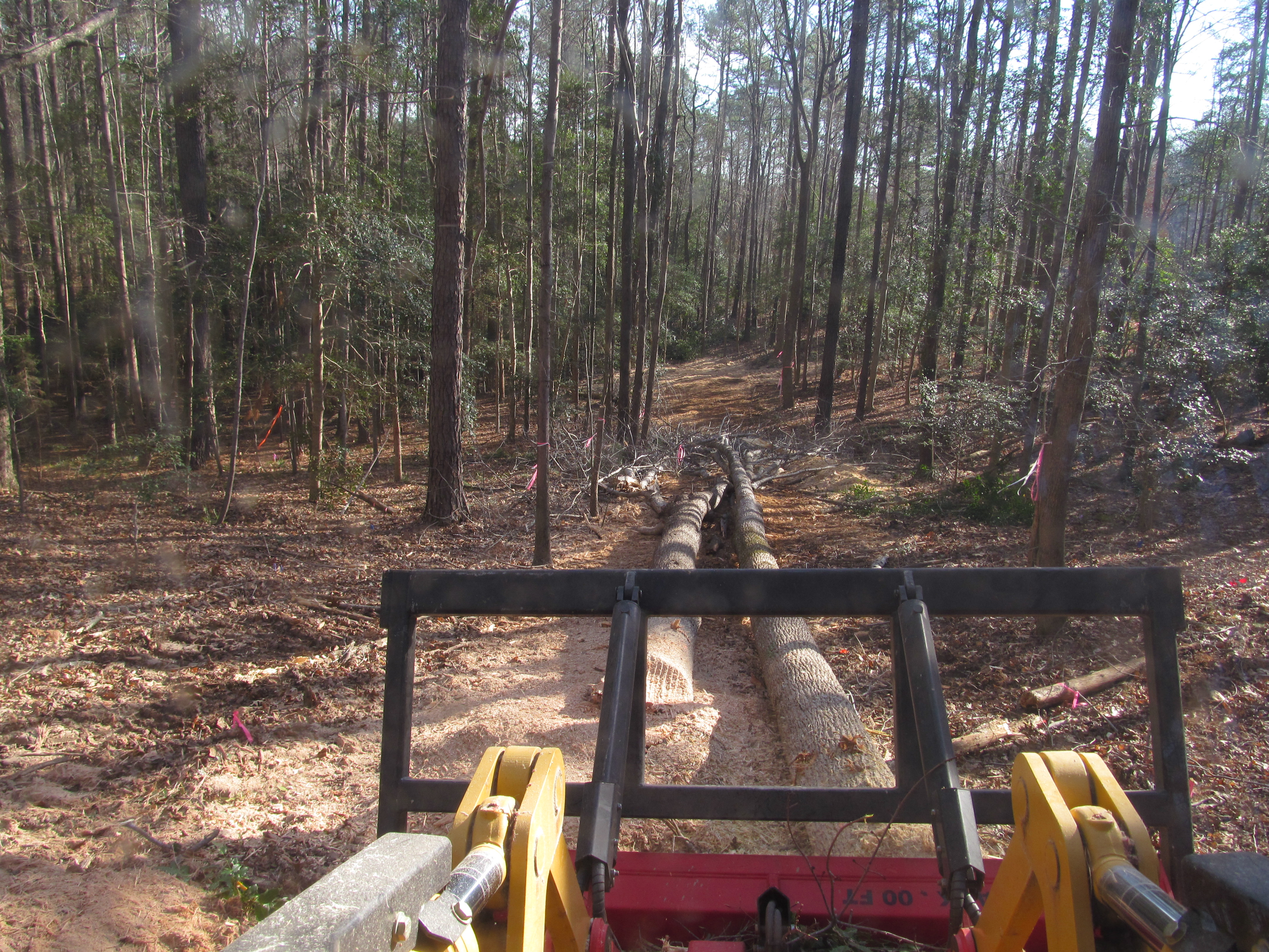Hydrocut Land Clearing Central Nc Forestry Mulching Gps